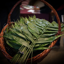 Palm Sunday 2019 photo album